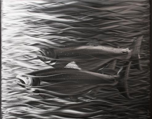 Steelhead Salmon in Stainless Steel by Graham Shodda, Bellingham, WA