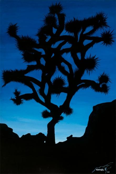 Joshua Tree by Heather Alvis, Bellingham, WA